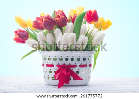 Gentle colored tulips in a basket. Spring flowers. Wooden board rustic - stock photo