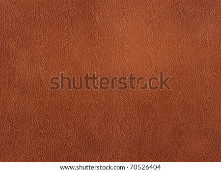 genuine leather - stock photo