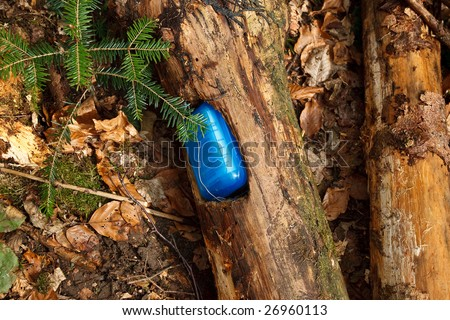 geocaching: cache in a piece of wood