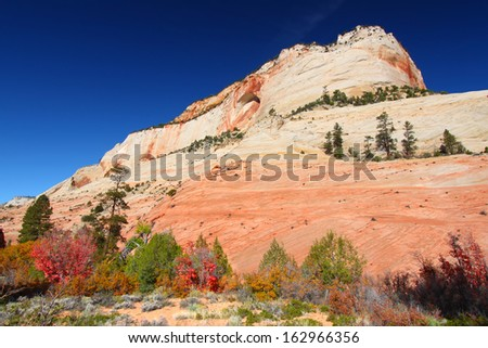 Geological features of Zion National Park in Utah - stock photo