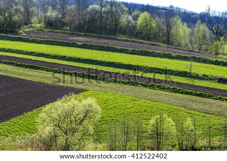 geometric agricultural fields - stock photo