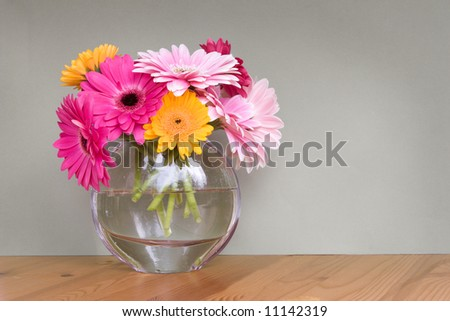 gerber daisies in a glass vase - room for copy - stock photo