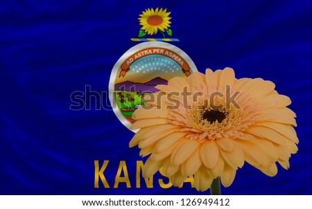 gerbera daisy flower and flag of us state of kansas as concept and symbol of love, beauty, innocence, and positive emotions - stock photo