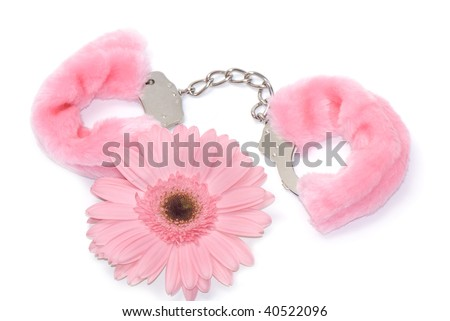 Gerbera flower and pink hand cuffs isolated over white background - stock photo