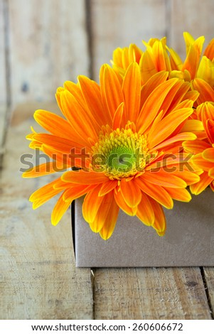 gerbera flower over wooden table background - stock photo