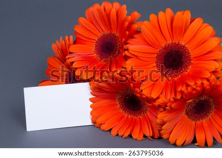 gerbera flowers with blank gift card for text - stock photo