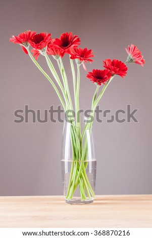Gerbera in a glass vase