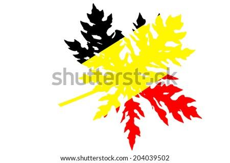 German flag on papaya leaves - stock photo