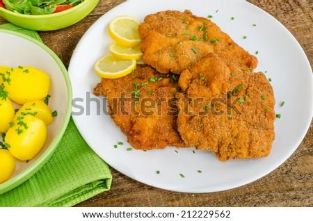 German schnitzel with potatoes, onion and lemon - stock photo