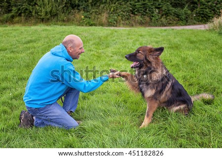 German Shepherd Dog shaking this owners hand. They are outside on grass doing training.