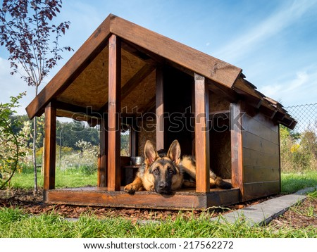German shepherd resting in its wooden kennel - stock photo