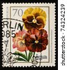 GERMANY - CIRCA 1965: A stamp printed by Germany, shows Viola flowers, circa 1965 - stock photo