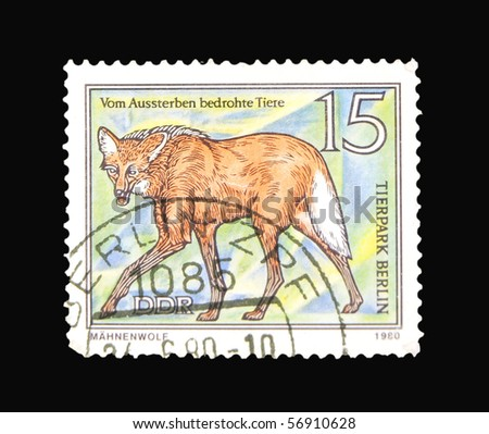 GERMANY - CIRCA 1980: A stamp printed in the Germany showing Maned Wolf, circa 1980