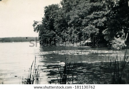 GERMANY - CIRCA 1960s: An antique photo of swan on a lake overgrown with water lilies - stock photo
