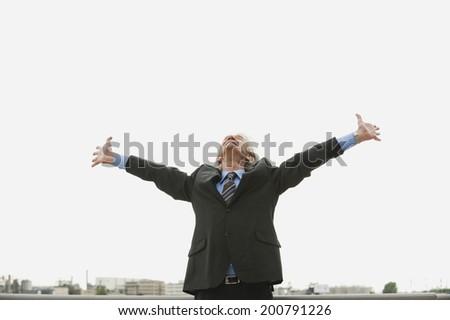 Germany, Hamburg, Businessman arms up, smiling - stock photo