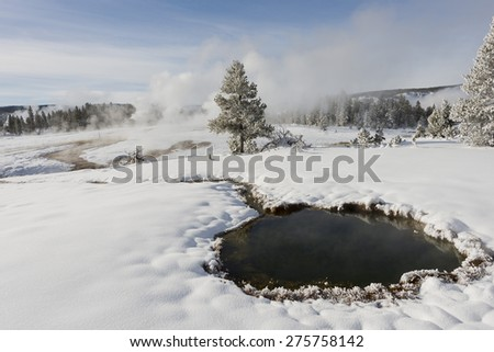 Geyser basin in a snow-covered landscape. Yellowstone National Park. - stock photo