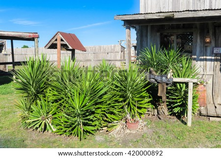 ghost town scene with a saddle and greenery - stock photo