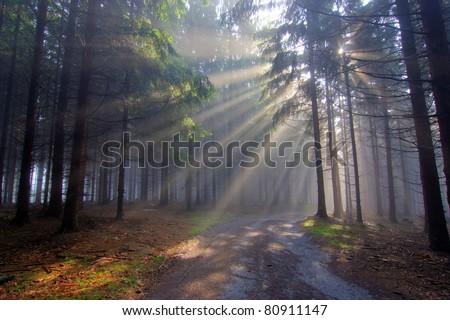 Gift of Light - God Beams - stock photo