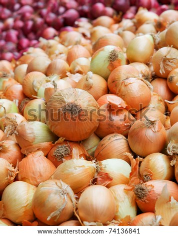 Gigantic pile of yellow onions with red onions in background at a farmers market - stock photo
