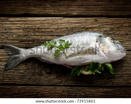gilt-head over wood ready to cooking - stock photo