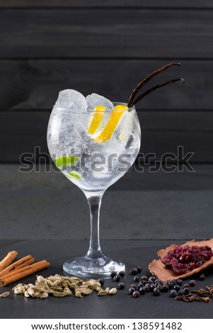 Gin tonic cocktail with ice vanilla lima and varied spices on black background - stock photo