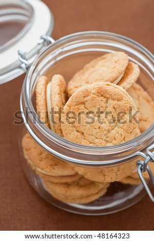 Ginger biscuits in a large glass jar - stock photo