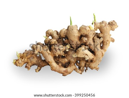Ginger root large isolated on white background. This has clipping path. - stock photo