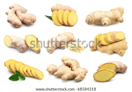 Ginger root on a white background.Collage - stock photo