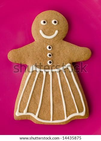 Gingerbread Woman - stock photo