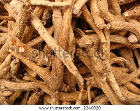 Ginseng - stock photo