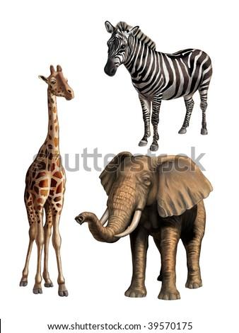 Giraffe, elephant and zebra. African wildlife, original digital illustration. Clipping path included. - stock photo