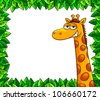 giraffe in a frame of leaves with blank copy space (vector version is available in my gallery) - stock photo