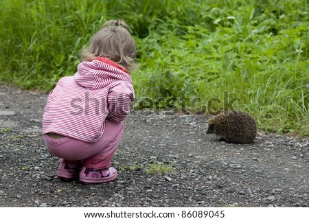 Girl and a hedgehog - stock photo