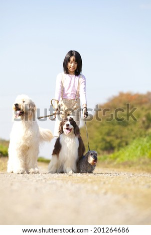 Girl and English Springer Spaniel and Golden Doodle for a walk