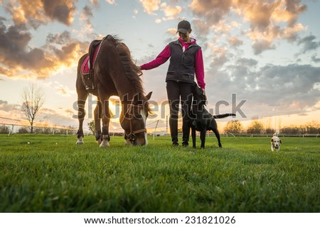 Girl and horse at sunset - stock photo