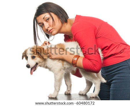 Girl drips a remedy from fleas and parasites to her dog - stock photo