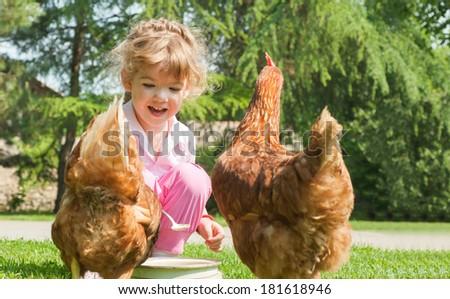 Girl feeding chickens in farm - stock photo