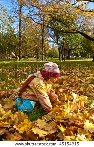 girl gathering autumn leaves on sunny day