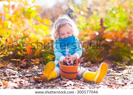 Girl holding acorn and colorful leaf in autumn park. Child picking acorns in a bucket in fall forest with golden oak and maple leaves. Children play outdoors. Kids playing and hiking in the woods. - stock photo