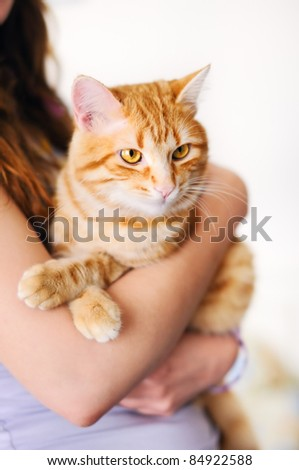 Girl holding beautiful orange tomcat - stock photo