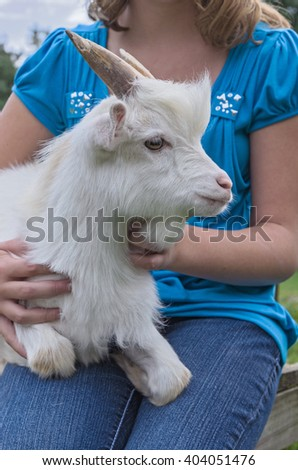 Girl Holding her Pet White Pygmy Goat - stock photo