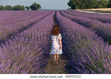 Girl in a white dress going away in a field of lavender - stock photo