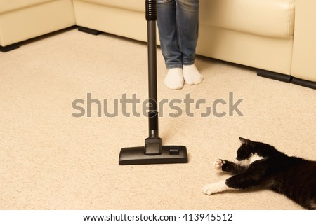 How to keep cats away from carpet