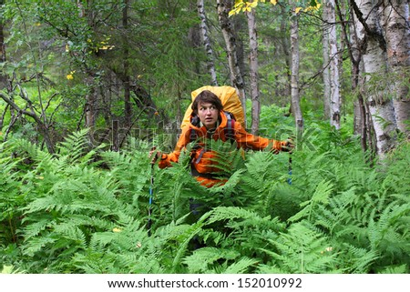 girl in the woods, among the ferns, cautiously looks around, Russia, Hibiny mountain - stock photo