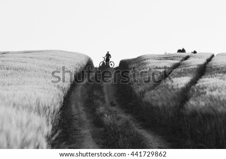 Girl on bicycle on horizon between two summer agricultural fields which are full of gold wheat. Original sport wallpaper. - stock photo