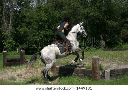 girl on horse jumping