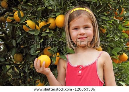 Girl picking oranges - stock photo