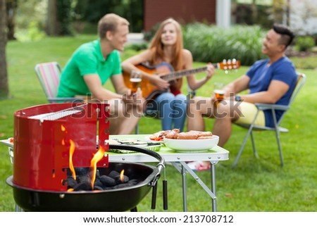 Girl playing the guitar on a barbecue - stock photo