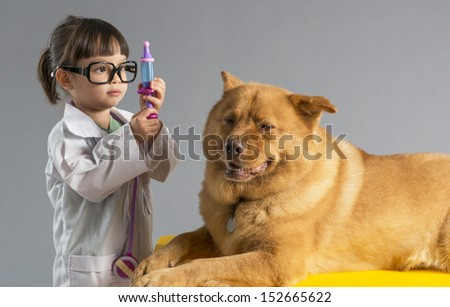 Girl playing veterinarian with dog - stock photo
