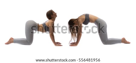 Girl practicing yoga in a studio on a white background